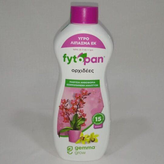 fytopan orxideea